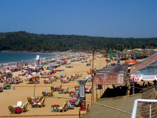 The beach landscaspe