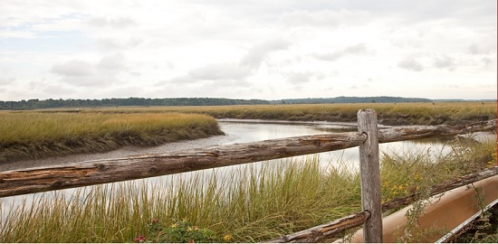scarborough Marsh, Portland, Maine