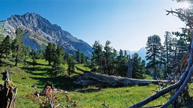 Swiss National Park in Graubünden