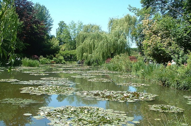 800px-Giverny_nympheas